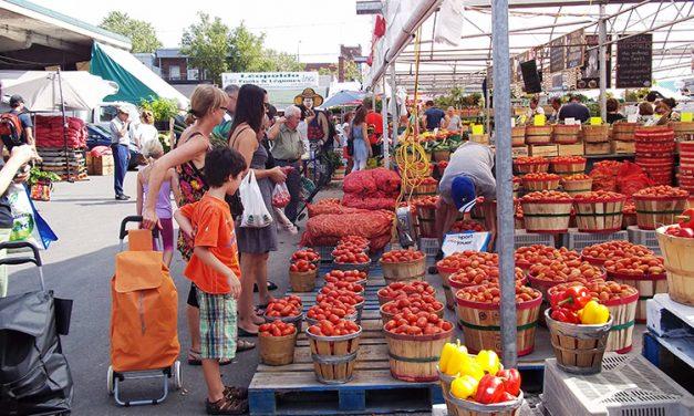Cette été, partez à la chasse des marchés fermiers!