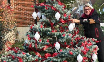 Décorations de Noël: ce n'est que le début…