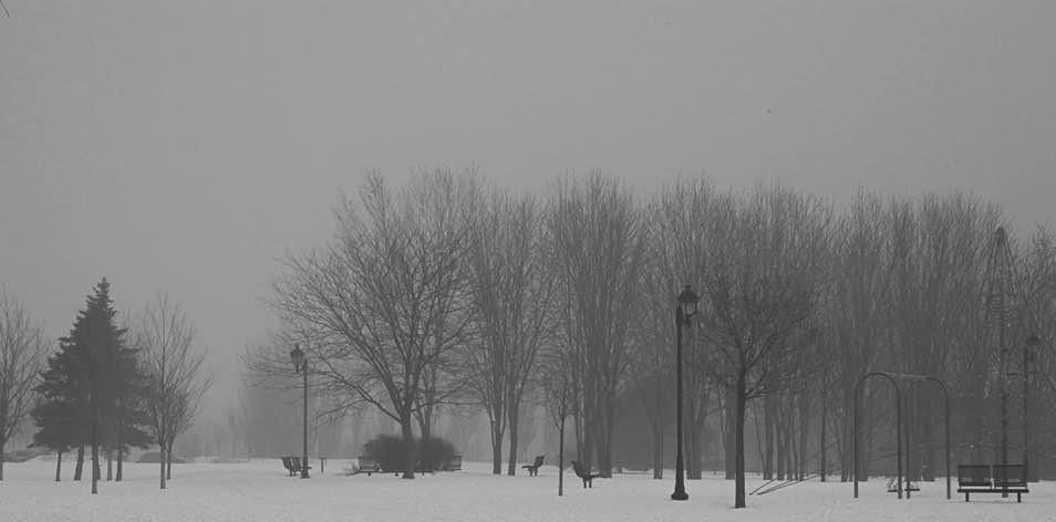 La brume s'empare de la pollution urbaine