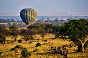 Vintage-Parc-National-du-Serengeti-2019