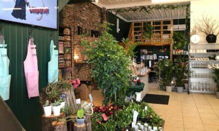 Lillipot, une nouvelle boutique florale