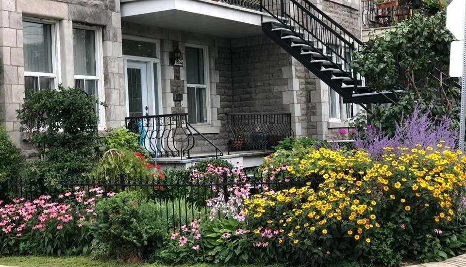 Des fleurs - Lasalle et 4e avenue